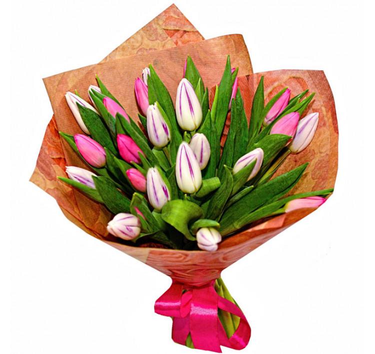Букет «25 тюльпанов»<br />
